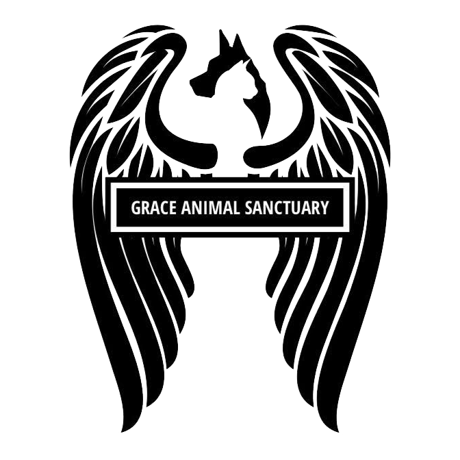 Grace Animal Sanctuary